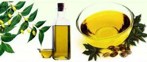 Neem oil to remove dandruff